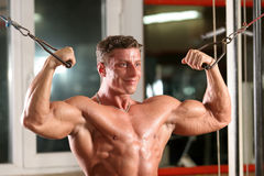 Biceps - overhead cable curl. Training shot of a young man in the gym - biceps - overhead cable curl Royalty Free Stock Photography