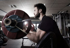 Biceps preacher bench arm curl workout man at gym Royalty Free Stock Images