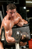Biceps, preacher one arm curls. Training shot of a young man in the gym - biceps, preacher one arm curls Stock Photos