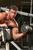 Biceps, preacher one arm curls Royalty Free Stock Image