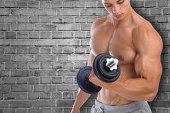 Biceps training bodybuilder bodybuilding muscles copyspace copy Stock Image