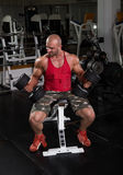 Biceps training. Bodybuilder in the gym preparing for the exercise Stock Image