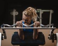 Biceps training Royalty Free Stock Photography