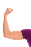 Biceps of a woman Stock Photos