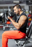 Biceps workout Royalty Free Stock Photo