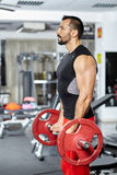 Biceps workout with barbell Stock Photo