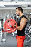 Biceps workout with barbell Royalty Free Stock Photography