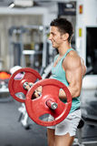 Biceps workout with barbell Stock Image