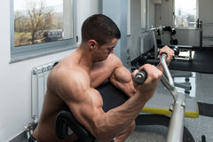Biceps Workout On Machine. Young Athlete Doing Heavy Weight Exercise For Biceps On Machine stock photo
