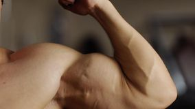 Biceps workout in machine stock footage