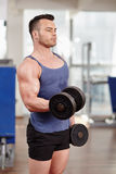 Biceps workout Royalty Free Stock Photography
