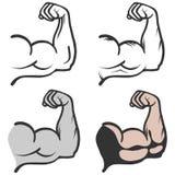 Bicepsenpictogram Stock Foto
