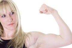 bicepshow Arkivbild