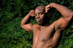 bicepsy potężni Fotografia Stock