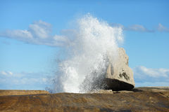 Bicheno Blow Hole Stock Photos