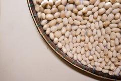 Bicho-da-seda pequeno branco dos casulos com copyspace, Vietname fotografia de stock