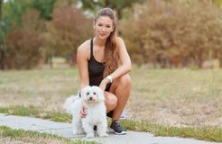 Bichon bolognese dog with beautiful in the park. Bichon bolognese dog with beautiful owner in the park stock image