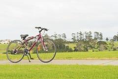 Bici, banco y la visión desde la colina, Whangaparaoa, alrededor de Auckland, Nueva Zelanda Foto de archivo