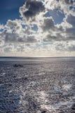 Bici a bassa marea Fotografia Stock