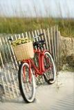 Bici che si appoggia contro la rete fissa alla spiaggia. fotografia stock libera da diritti