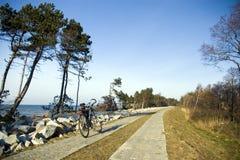 Bici che si leva in piedi su un PA concreto Immagine Stock