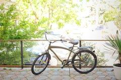 Bici de color caqui del vintage en la salida del sol en el patio Imágenes de archivo libres de regalías