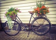 Bici de la flor Imagen de archivo