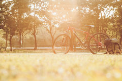 Bici de montaña Foto de archivo