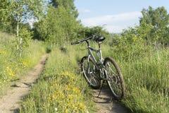Bici de montaña a campo través en pista campo a través en natu hermoso Fotografía de archivo libre de regalías