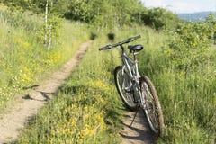 Bici de montaña a campo través en pista campo a través en natu hermoso Fotos de archivo
