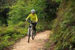 Bici de montaña de ciclo del ciclista en rastro del bosque Imagenes de archivo