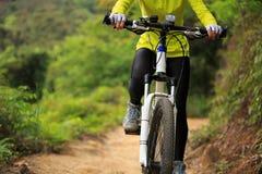 Bici de montaña de ciclo del ciclista en rastro del bosque Fotografía de archivo libre de regalías
