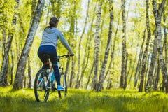 Bici de montaña del montar a caballo del ciclista en el bosque del abedul Fotos de archivo