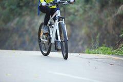 Bici de montaña del montar a caballo del ciclista de la mujer en rastro del bosque Fotos de archivo libres de regalías