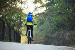 Bici de montaña del montar a caballo del ciclista de la mujer en rastro del bosque Imagenes de archivo