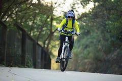Bici de montaña del montar a caballo del ciclista de la mujer en rastro del bosque Foto de archivo libre de regalías