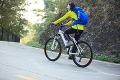 Bici de montaña del montar a caballo del ciclista de la mujer en rastro del bosque Fotos de archivo