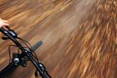 Bici de montaña del montar a caballo en bosque del otoño Foto de archivo libre de regalías