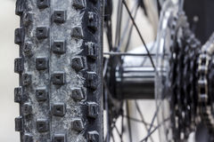 Bici de montaña del neumático Fotos de archivo libres de regalías