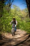 Bici de montaña del paseo del hombre a través del bosque Imagen de archivo