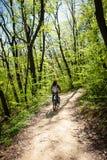 Bici de montaña del paseo del hombre a través del bosque Fotografía de archivo