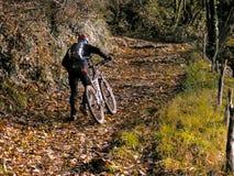Bici de montaña en rastro escarpado Fotos de archivo libres de regalías