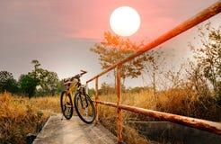 Bici de montaña hermosa en el puente concreto Imagen de archivo