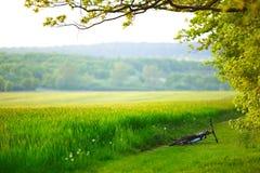 Bici de montaña que pone cerca del campo o del prado fotografía de archivo