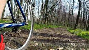 Bici del ciclista mientras que monta la bicicleta en el camino forestal almacen de video