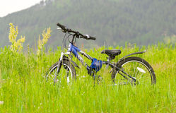 Bici del deporte Fotos de archivo libres de regalías