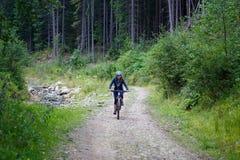 Bici del montar a caballo de la mujer joven en el camino del rastro del bosque Fotos de archivo libres de regalías