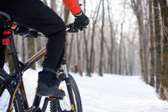 Bici del montar a caballo del motorista de la montaña en el rastro Nevado en el invierno hermoso Forest Free Space para el texto Fotos de archivo libres de regalías