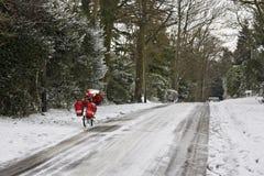 Bici dell'alberino Fotografie Stock Libere da Diritti