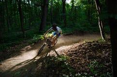 Bici dell'uomo nella foresta fotografie stock